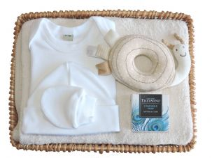 Drip Drip Drop Baby Gift Basket by Mulberry Organics